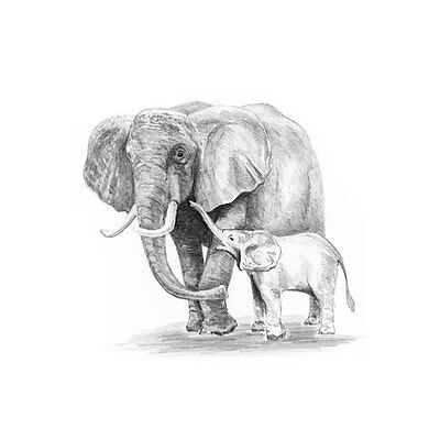 Mini Sketching Made Easy - Royal Langnickel Pencil Drawing Kit - Elephant & Baby