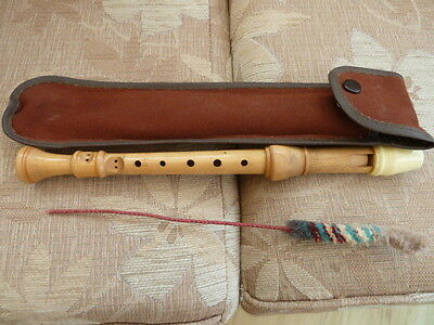A Wooden Recorder with brush and case