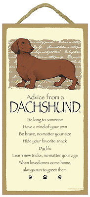 Advice From A DACHSHUND 10 x 5 Wood SIGN Plaque USA Made