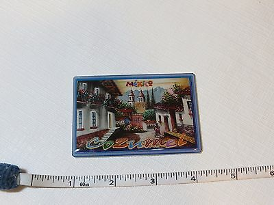 Mexico Cozumel travel souvenir magnet fridge refrigerator houses streets collect