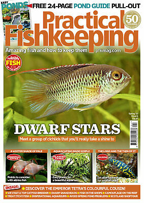 Practical Fishkeeping Magazine Spring 2017 Issue 5 Dwarf Stars PFK Tropical Fish