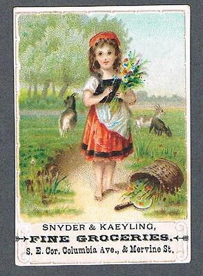 Original 1890's Snyder & Kaeyling Fine Groceries Advertising Trade Card