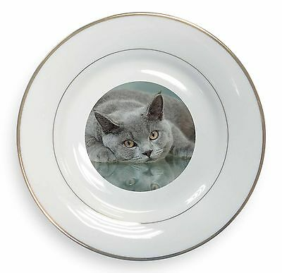 AC-11SC British Blue Cat Laying on Glass Single Leather Photo Coaster Animal Br
