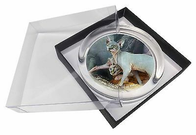 Sphynx Cat 'Love You Mum' Glass Paperweight in Gift Box Christmas Pr, AC-24lymPW
