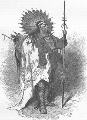 USA. North-American Indians. chief in full war dress 1880 old antique print