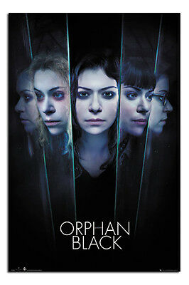 Orphan Black Faces Poster New - Maxi Size 36 x 24 Inch