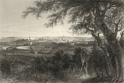 MARYLAND. A view of the city of Baltimore (from Druid Hill Park)  1874 print