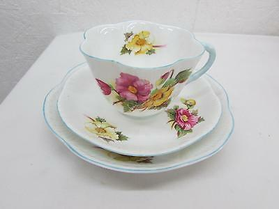 Shelley Fine Bone China Begonia Trio Tea Cup Saucer & Underplate Dainty