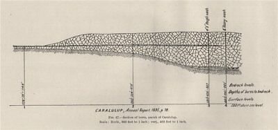 Section of bores, Parish of Caralulup. Victoria, Australia. Mining 1909 map