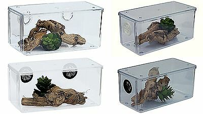 Tarantula/Spider/Scorpion Mini Vivarium,enclosure Various Options Availible