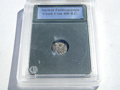 Ancient Panticapaeum Greek Coin 400 B.C. in Protective Acrylic Case