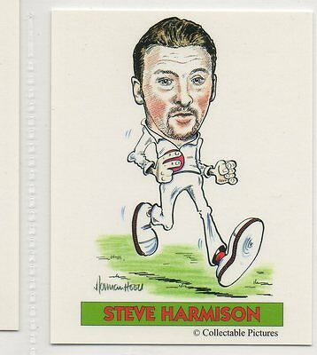 #11 Steve Harmison  Cricket Collector Card