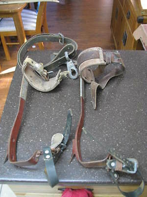 Nice Power Line Tree Climbing Spikes And Belt Estate Find