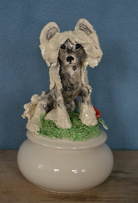 Chinese Crested... Handsculpted ceramic jewelry box..OOAK .LOOK