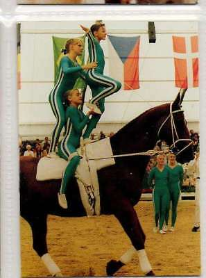#150 Swedish Vaulting team equestrian collector card
