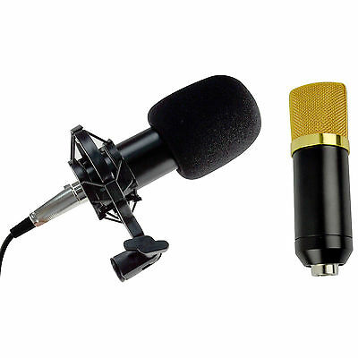 Pro Black Condenser Dynamic Microphone Mic Sound Studio Recording & Shock Mount