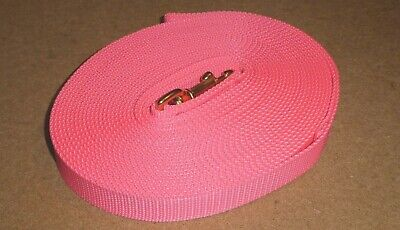10 metre Long Lunge Line/Dog Training Lead, Brass Clip. NEON PINK