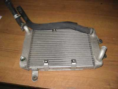 Suzuki Burgman on 400, Type WVAU , Coolant, Radiator 1