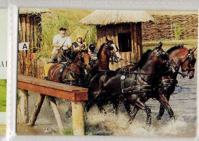 #190 ad arts NED - four in ha equestrian collector card