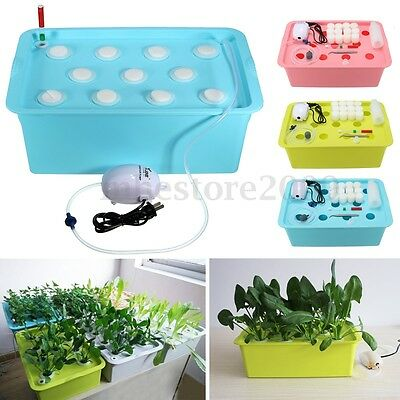 11 Holes Plant Site Hydroponic System Grow Kit Bubble Tub Air Pump Water Culture