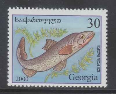 Georgia 2000 - Pesci - Fish - T. 30 - Mnh