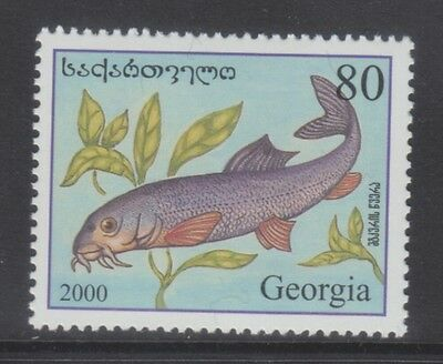 Georgia 2000 - Pesci - Fish - T. 80 - Mnh