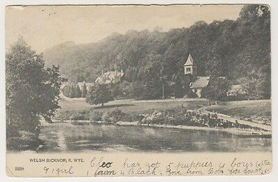 Herefordshire postcard - Welsh Bicknor, River Wye - P/U