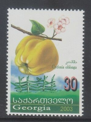 Georgia 2003 - Frutta - Fruits - T. 30 - Mnh