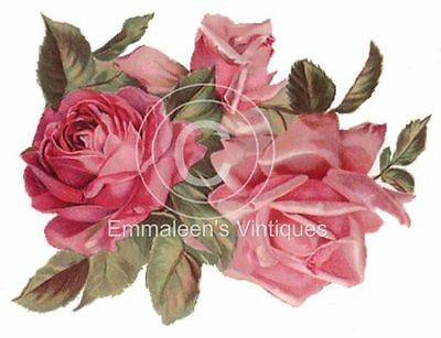 Vintage Image Extra Large Shabby Pink Roses Waterslide Decals FL132