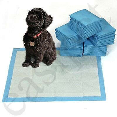 Super Absorbent Puppy Toilet Training Large Pads 60cm x 45cm Dog Cat Wee Easipet
