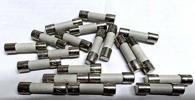 20x T6.3A time delay 5x 20mm anti-surge fuse  S505 HBC ceramic slow 6A