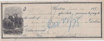 1887 Check ~ Promise Note ~ $115 ~ BOSTON ~ pic of Bulls ~ Merrimac Mass.