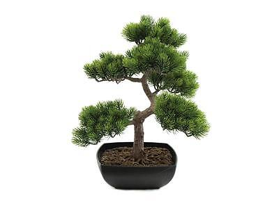 Europalms Bonsai-Pinie, 50cm - Kunstpflanze