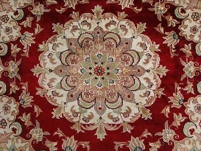 RED AWESOM LOVELY MEDALLION FLORAL HAND KNOTTED RUG WOOL SILK CARPET 4x4 FB-2325
