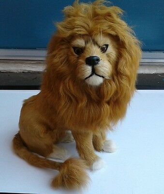 """VINTAGE 1960`S RAREl 11"""" WILD LION TAXIDERMY Style ANIMAL REAL FUR From AFRICA"""