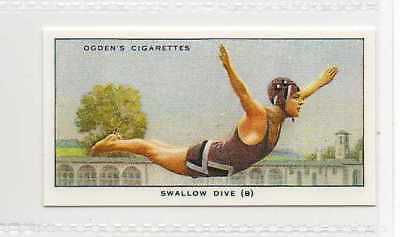 #42 swallow dive (b) the flight swimming r card