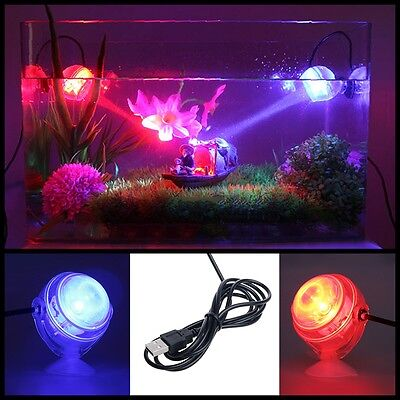 Aquarium Fish Tank Submersible LED Spotlight Lighting Underwater Lamp EU Plug