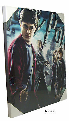 Harry Potter Leinwandbild - Movie Poster Leinwand 50 x 40 cm - Neu