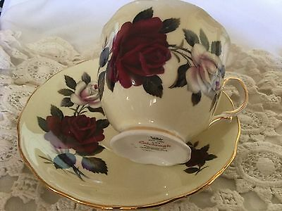 Colclough Bone China Cup And Saucer England   Cream/red And White Roses
