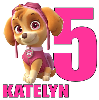"""Skye Paw Patrol Name Age Personalized Iron On Transfer 5x5"""" LIGHT Colored Fabric"""