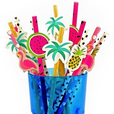 20 x 19cm Assorted Solid Paper Straws Tropical  Party Flamingo Cocktail Summer