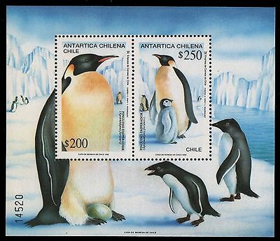 Chile 1992 - Mi-Nr. Block 23 ** - MNH - Pinguine / Penguins