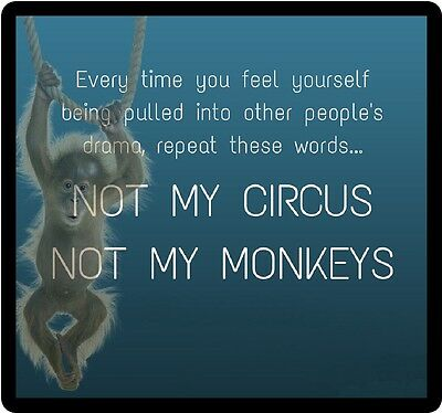 Monkey Humor Not My Circus Refrigerator Magnet