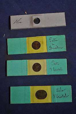 Four Antique Microscope Slides