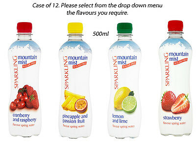 MOUNTAIN MIST SPARKLING WATER CASE OF 12 500ml BOTTLES LUNCHES PICNICS WEDDING