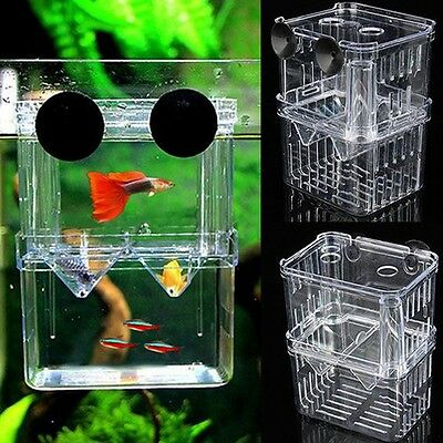 Aquarium Pet Fish Tank Guppy Double Breeding Breeder Rearing Box Hatchery