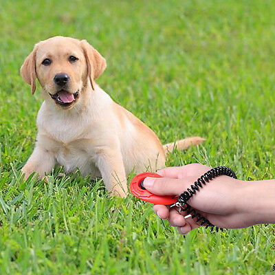Dog Pet Click Clicker Training Obedience Agility Trainer Aid With Wrist Strap