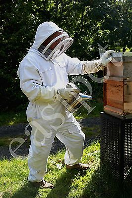 Beekeepers Bee Suit Beekeeping S M L XL XXL Premium Quality Protective Easibee