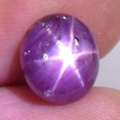 6ct+ Unheated Untreated Ceylon STAR Ruby ~Natural Excellent Six RAY STAR Effect