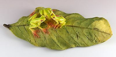 "Tree Frog Family Sitting On Leaf Figurine 6"" Long Resin New In Box!"